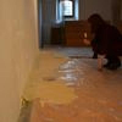 Maja zoekt een Kamer / Studio in Groningen